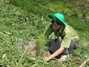 Vietnam impulsa cumplimiento de Objetivos de Desarrollo Sostenible
