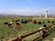 Agricultura orgánica en Vietnam logra crecimiento superior al promedio mundial