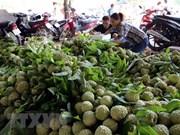 Vietnam destrona a Malasia para convertirse en mayor socio comercial de China en ASEAN