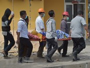 No hay víctima vietnamita en terremoto en Indonesia, afirma embajada
