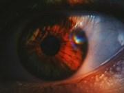 Singapur ensaya escaneo de iris de viajeros en puestos fronterizos