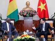 Vietnam y Guinea buscan ampliar la cooperación bilateral