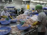 Exportación de pescado Tra vietnamita supera los mil millones de dólares en siste meses