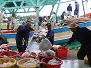 Vietnam trabaja por levantar tarjeta amarilla aplicada por UE a su sector acuícola