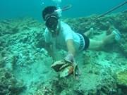 Impresionante arco de piedra submarino en isla vietnamita de Ly Son