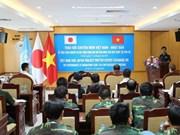 Vietnam y Japón comparten experiencias de mantenimiento de la paz