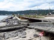 Provincia vietnamita acelera preparación ante riesgo de deslizamiento de tierra