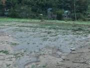 Inundaciones dejan cuatro muertos en provincia vietnamita de Son La
