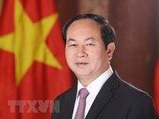 Próxima visita de presidente Dai Quang evidencia que Vietnam prioriza lazos con Egipto