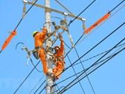 Grupo de Electricidad de Vietnam: empresa estatal más transparente del país