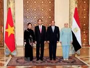 Vietnam y Egipto acuerdan promover cooperación en todas las esferas