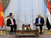Presidente de Vietnam destaca nexos de amistad tradicional con Egipto