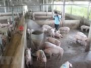 Publican sistema de información de salud animal de Vietnam