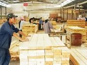 Exportación de madera de Vietnam alcanza unos cuatro mil millones de dólares hasta agosto