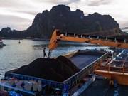 Grupo de Carbón de Vietnam espera vender 41 millones de toneladas en 2019