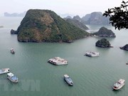 Provincia vietnamita de Quang Ninh atrae a gran número de turistas en asueto por Día Nacional