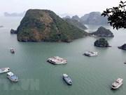 Provincia vietnamita trabaja para garantizar calidad de barcos turísticos en Bahía de Ha Long