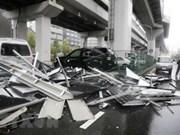 Hasta el momento no se reportan víctimas vietnamitas por tifón Jebi en Japón, informó Consulado General