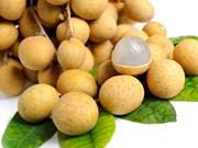 Exportan longan de madurez tardía de Hanoi a Estados Unidos y Polonia