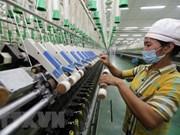 Localidades sureñas vietnamitas muestran buen desempeño económico