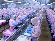 PNUD sugiere a Vietnam promover desarrollo del sector privado