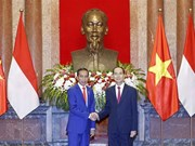 Prensa indonesia acapara visita de Joko Widodo a Vietnam