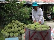 Productos con indicación de procedencia brinda ganancia a Tailandia
