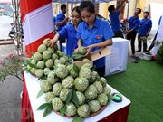 Feria internacional promoverá comercio entre Vietnam y China