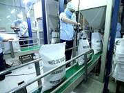 Vietnam exporta casi cinco millones de toneladas de arroz en ocho meses