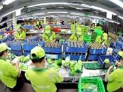 Vietnam ingresa monto multimillonario por exportaciones en ocho meses