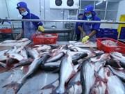 EE.UU. reconoce estándares de calidad de pescados sin escamas de Vietnam