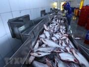 Valor de exportaciones vietnamitas de pescado Tra podría alcanzar dos mil millones de USD