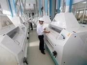 Vietnam logra índice de crecimiento récord del PIB en ocho años