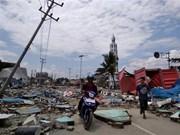 Registran al menos 384 muertos por terremoto y tsunami en Indonesia