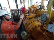 Inversión extranjera directa constituye fuerza motriz para desarrollo del sector petrolero en Vietnam