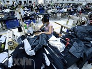Menos desempleados en Vietnam en primeros nueve meses de 2018