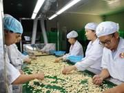 Aumentan 9,3 por ciento exportaciones agroforestal y acuícola de Vietnam