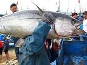 Vietnam prioriza desarrollo de recursos humanos para la economía marítima