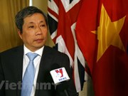 Nexos Vietnam – Reino Unidos están en su mejor etapa, afirma embajador vietnamita