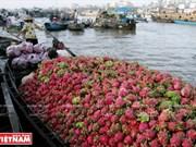Indonesia promueve cooperación con provincia vietnamita de Can Tho
