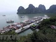 Provincia vietnamita de Quang Ninh prioriza el progreso de la economía marítima