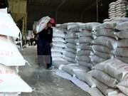 Vietnam ingresa dos mil 500 millones de dólares por la venta de arroz en nueve meses