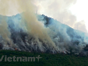 Vietnam activo en el cumplimiento de compromisos globales contra el cambio climático
