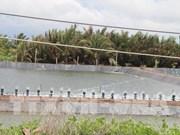 Área costera Go Cong, zona clave de exportación de productos acuáticos de Vietnam