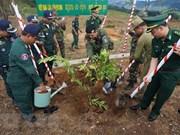 Intensifican relaciones multifacéticas entre Vietnam, Laos y Camboya