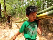 Malasia propone penas más severas a quienes explotan el trabajo infantil