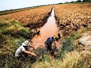 Vietnam muestra esfuerzos por implementación de acciones de respuesta a cambio climático