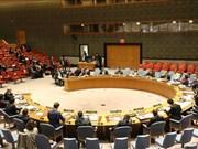 Vietnam llama a continua reforma de ONU basada en prioridades de los países