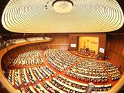 Voto de confianza en Asamblea Nacional acapara atención del electorado vietnamita
