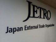 Organización japonesa asiste a empresas vietnamitas para elevar tasa de nacionalización de productos